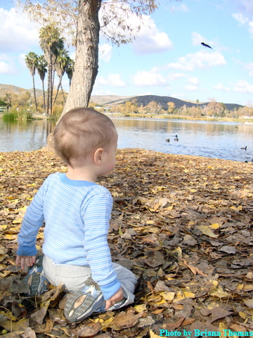 contest_kk_at_lake